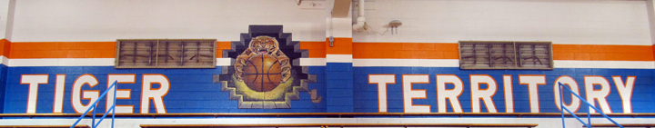 Tiger basketball closeup