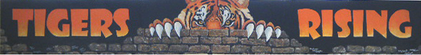 Tigers Rising Melissa Stanfield Walker artist