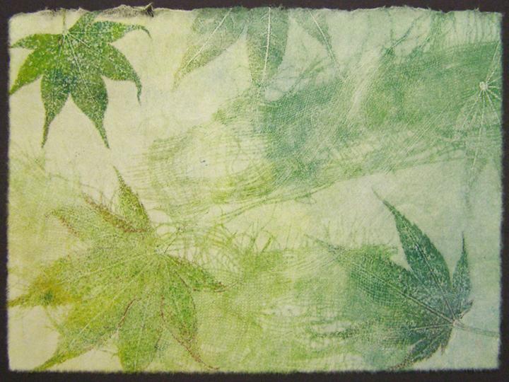 Ghost-leaf-1