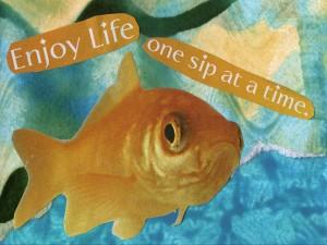 enjoy-life-ATC